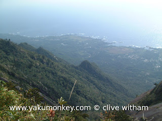 Mochomu trail views
