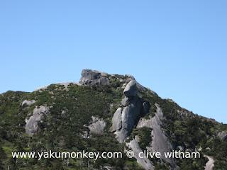 Kuromi dake, Yakushima