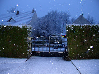 our front gate