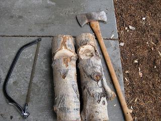 Mad Bioneer: Starting a Mushroom Log