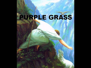 "SERMON: ""PURPLE GRASS"" BY Rev. Elder Freda Smith"