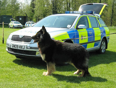 Showcomms: National Police Dog Trials: Day 3 - gadgets everywhere
