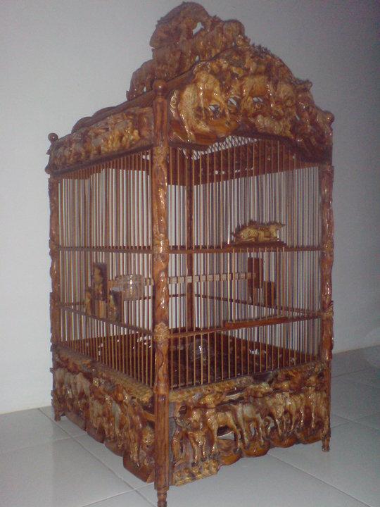 Gambar Membuat Kandang Burung Hantu Drh Fira Sovica Owl ...