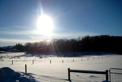 Gale Woods Farm