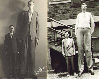13 Above: Sultan Kosen Officially Crowned The World's Tallest