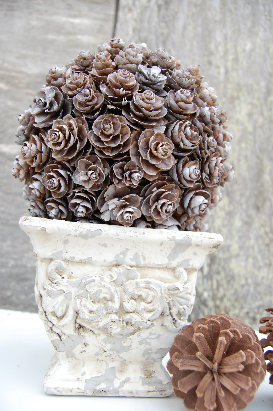 Kiefernzapfen Pine Cone Topiary Somewhat Simple