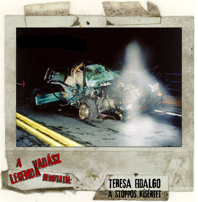 Teresa Fidalgo  Car Accident Wikipedia