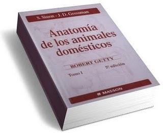anatomia animales domesticos sisson