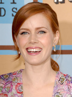 Amy Adams Ponytail Hairstyle Picture