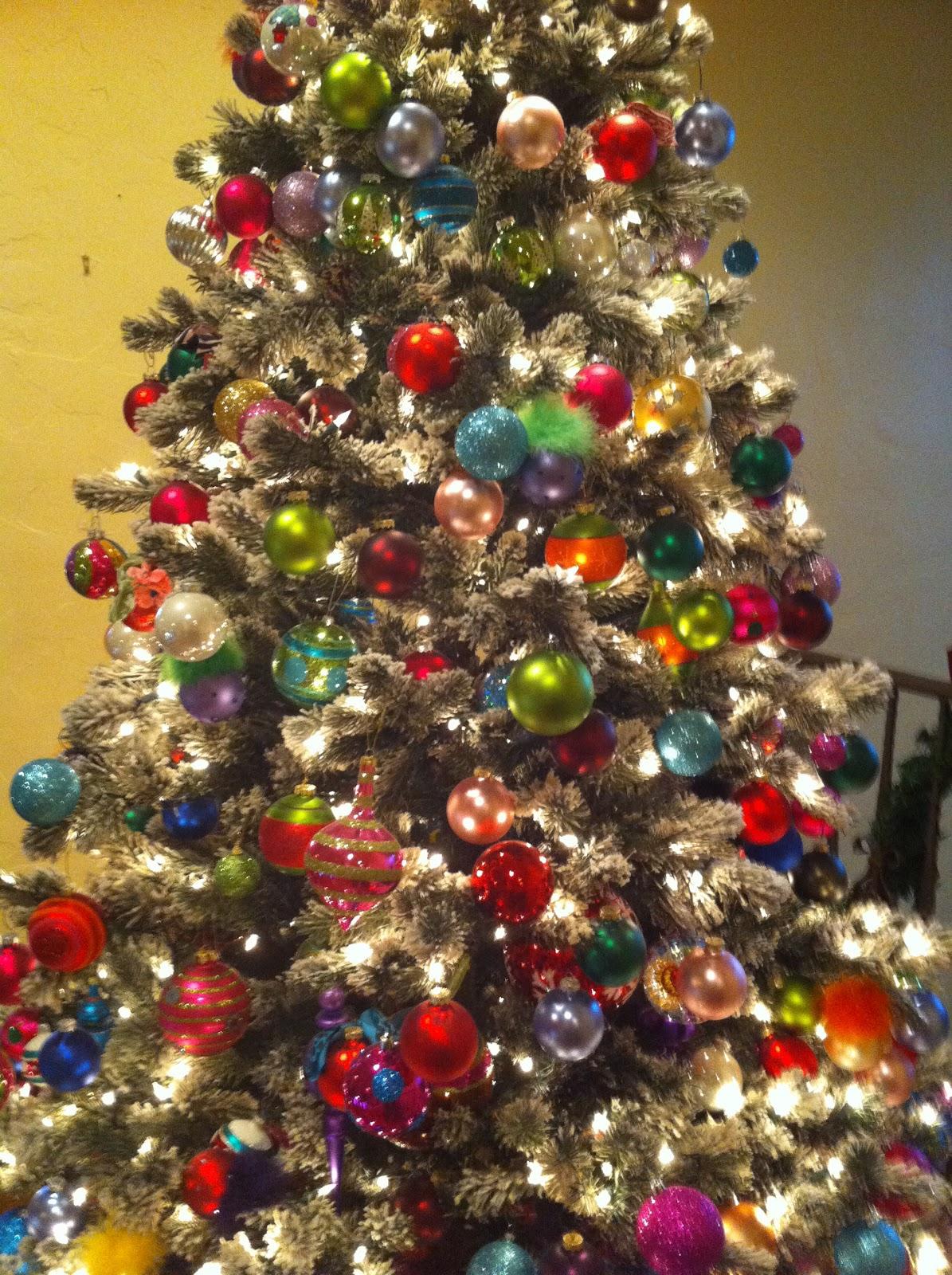 California Christmas Trees