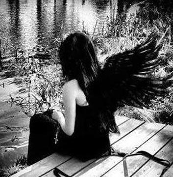[anjo.jpg]