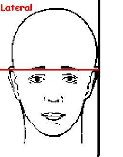 Mountain Imaging: Skull Positioning