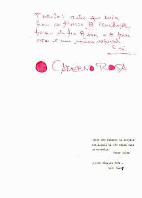 CADERNO ROSA DE LAMBY LORI PDF O