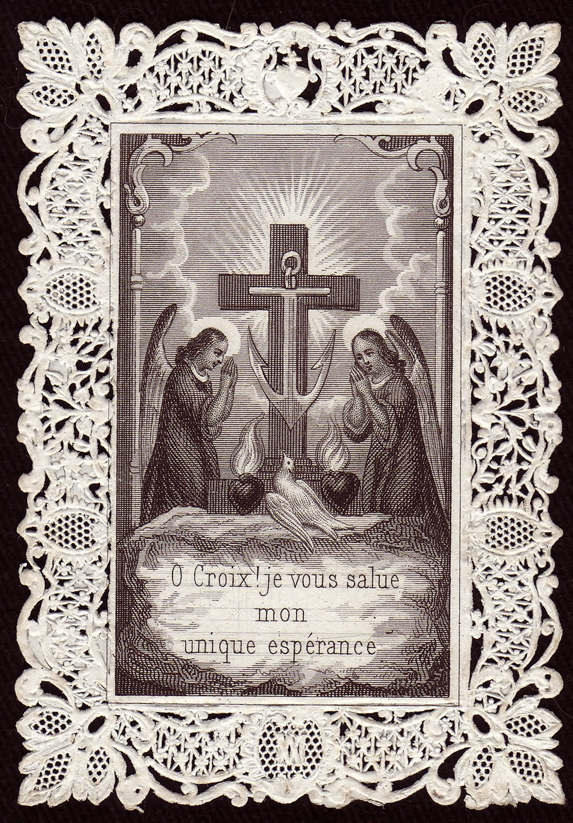 Nest Of The Doves Exaltation Of The Holy Cross Solemnity
