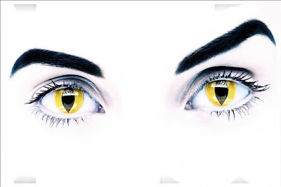 eyes by marco craig