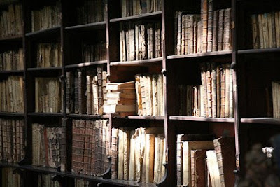 The Hermitage Dusty Bookshelves