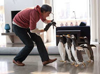 Jim Carrey in a movie about penguins.