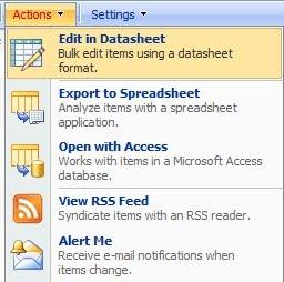 Using the datasheet view to bulk update sharepoint 2010 list.