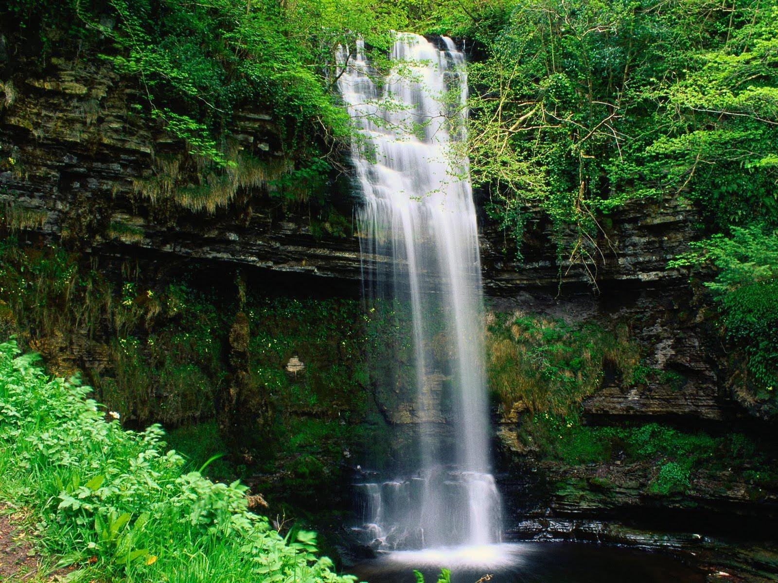 Wallpaper Provider: Waterfall Wallpapers