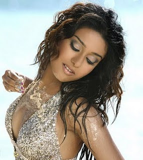 Amrita Rao Bollywood Hot and Sexy Actress Photos