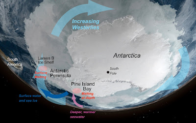 West Antarctica is seeing dramatic ice loss particularly the Antarctic Peninsula and Pine Island regions