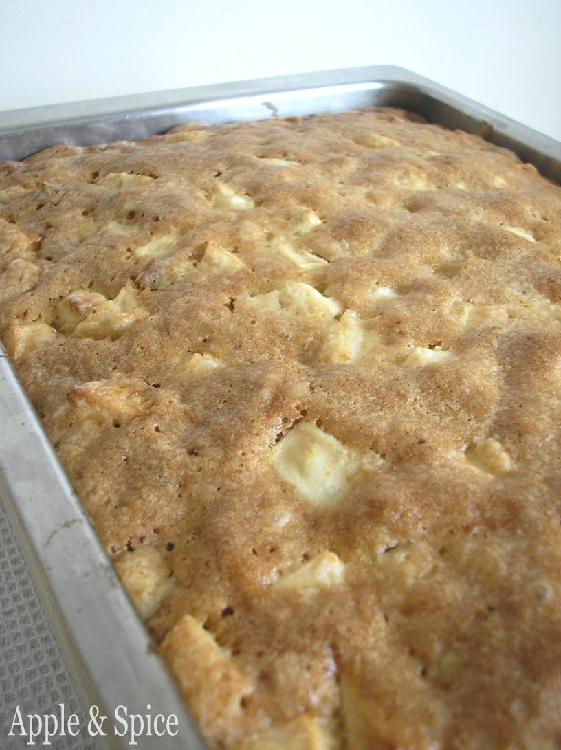 Wooden Spoon Apple Cake