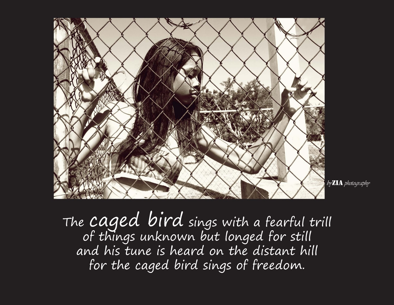Zia S Stuff I Know Why The Caged Bird Sings