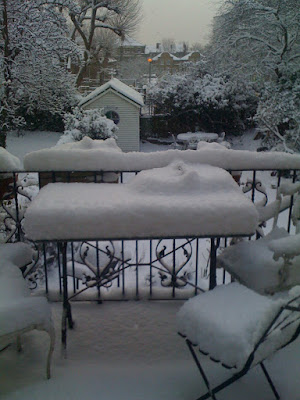 The balcony (at least 5 inches of snow!)