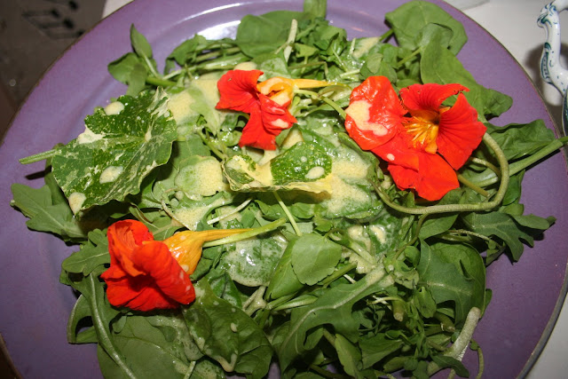 Mixed leaves with Nasturtiums