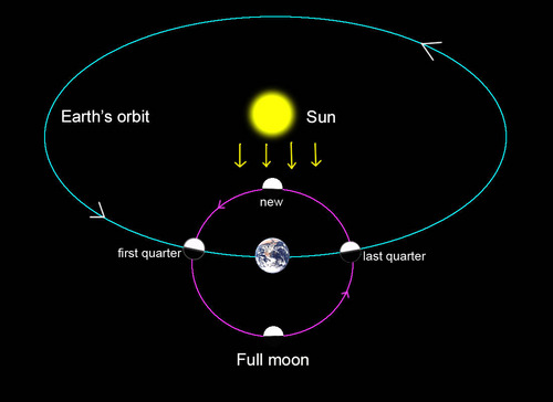 Image result for full moon science