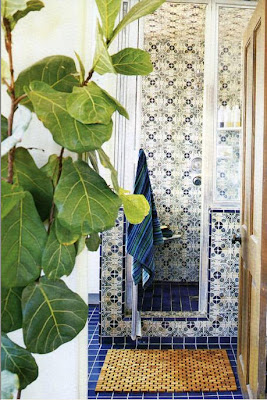 Even just tiling a normal western shower with Moroccan tiles and adding some North AFrican plants create a Moroccan feel...like in this bathroom designed by TimClarke.com
