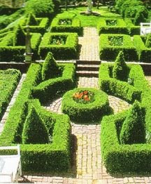 Boxwood Garden Pathways