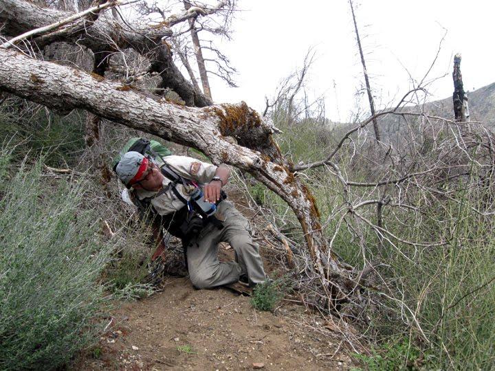 Joe's hiking adventures: Pine Ridge Trail 3-20-10