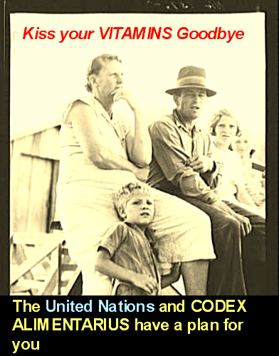 https://i1.wp.com/3.bp.blogspot.com/_yrONqR-CoB0/SxKMN_v7zgI/AAAAAAAAA2w/KFsCULDgKcY/s1600/Codex_Alimentarius_United_Nations_B.png