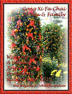 2011 Chinese New Year greeting card