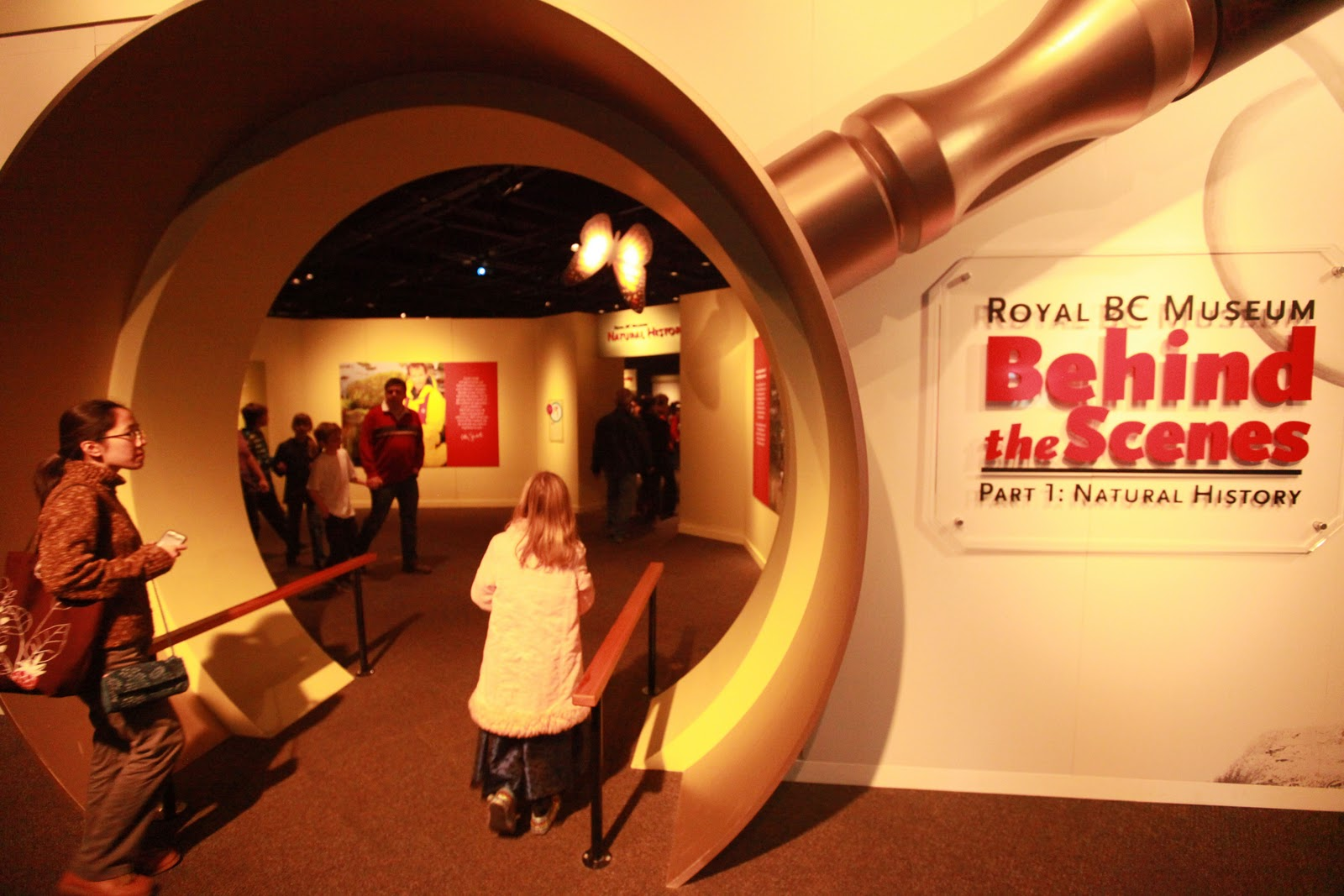 Museum behind the scenes-4310