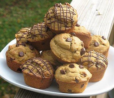 Chocolate chip pumpkin Muffin