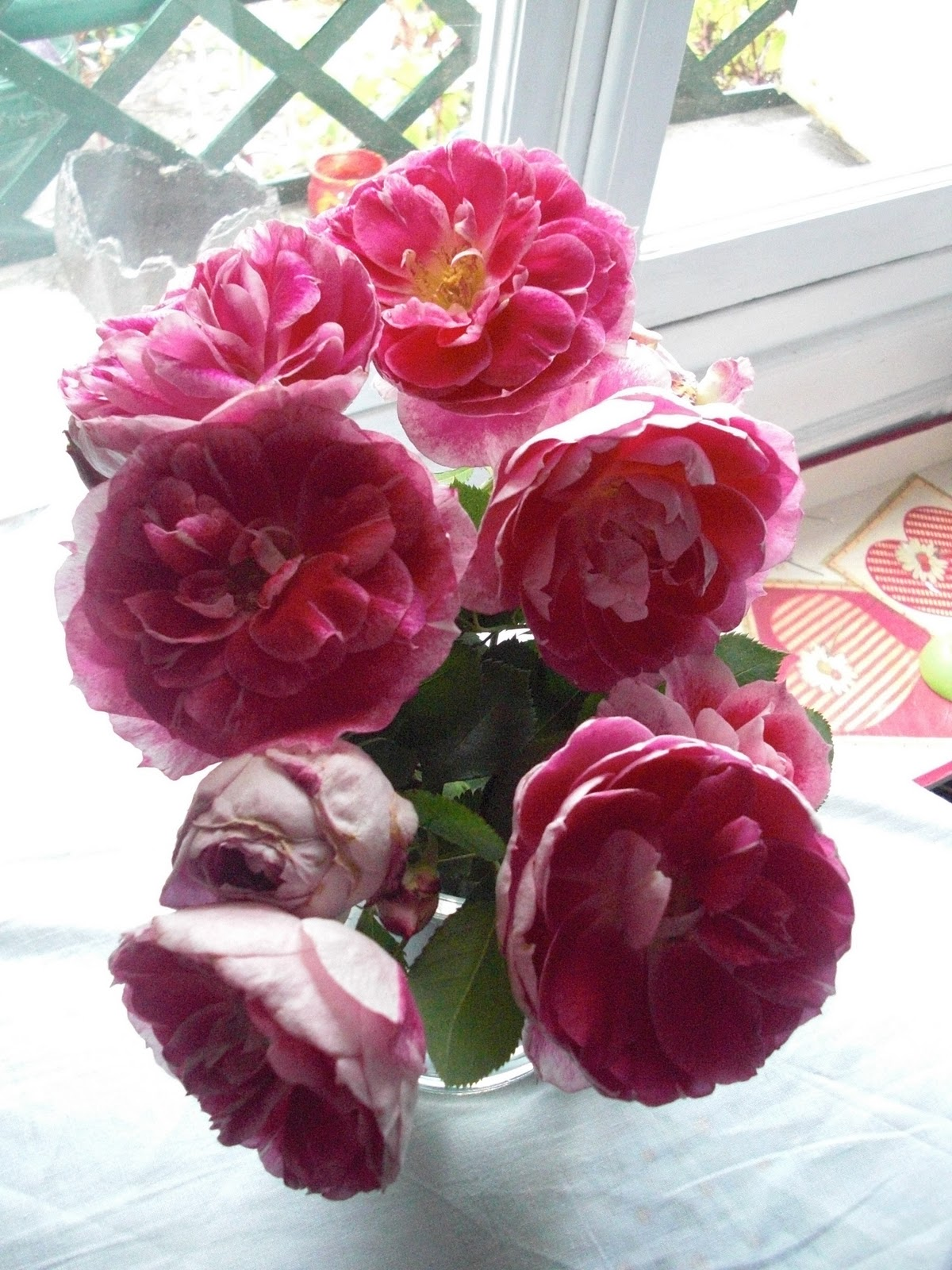 rose capucine le monde merveilleux de rose capucine. Black Bedroom Furniture Sets. Home Design Ideas