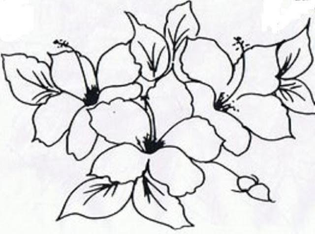 risco pintura em tecido hibiscos