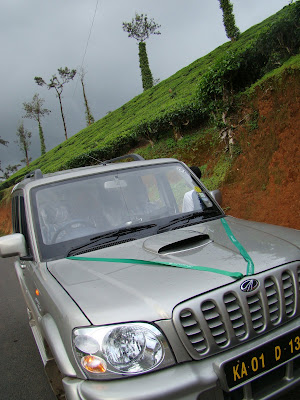 Scorpio parked besides Tea garden in Wayanad