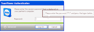 Password TeamViewer