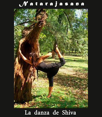 yoga aprender por el cuerpo