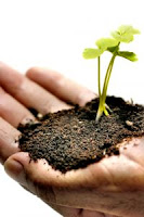 Grow plants under different conditions