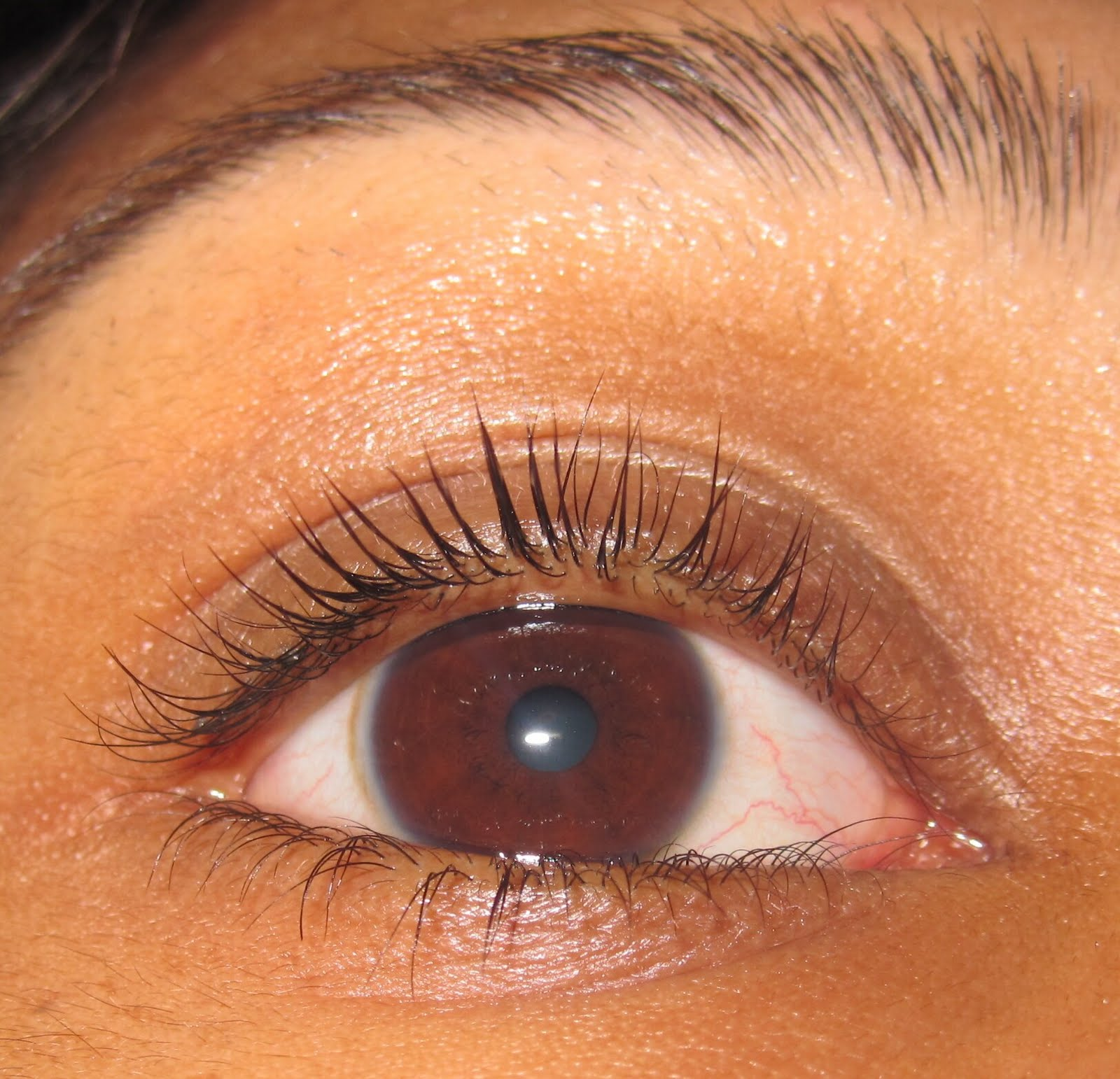 7bfb4cbda95 [Note: i took these pics with one lashing of the lash builder]