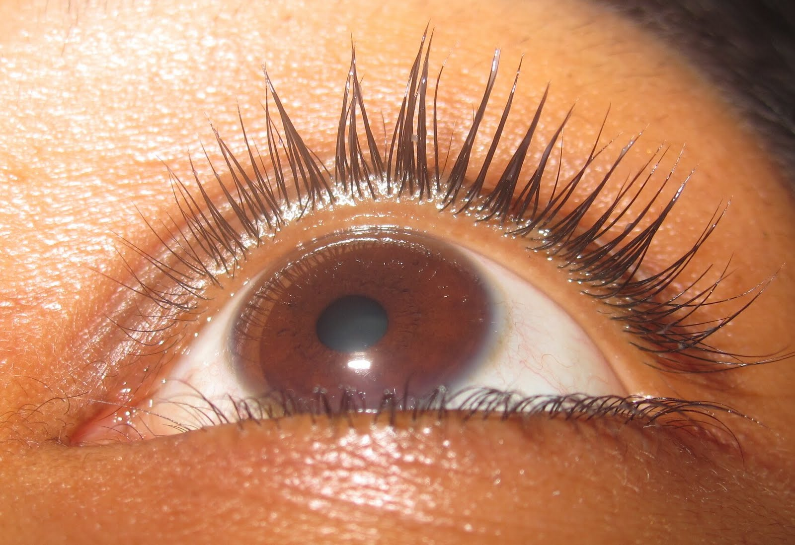 e77bfb4a133 So in two weeks iv noticed less fall out, lashes do feel thicker and  stronger, and they look fuller because im noticing new growth.
