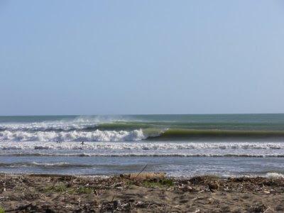 Pancer Surf Point