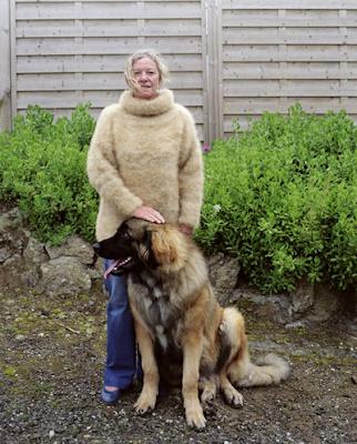 dog hair sweater