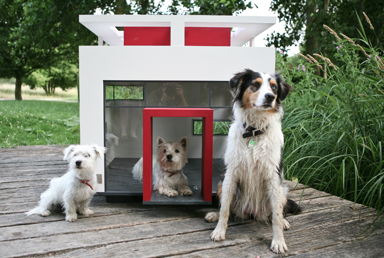 Bauhaus Doghouse