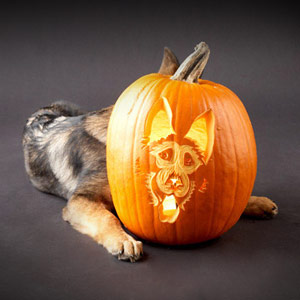 Dog Breed Pumpkin Stencils