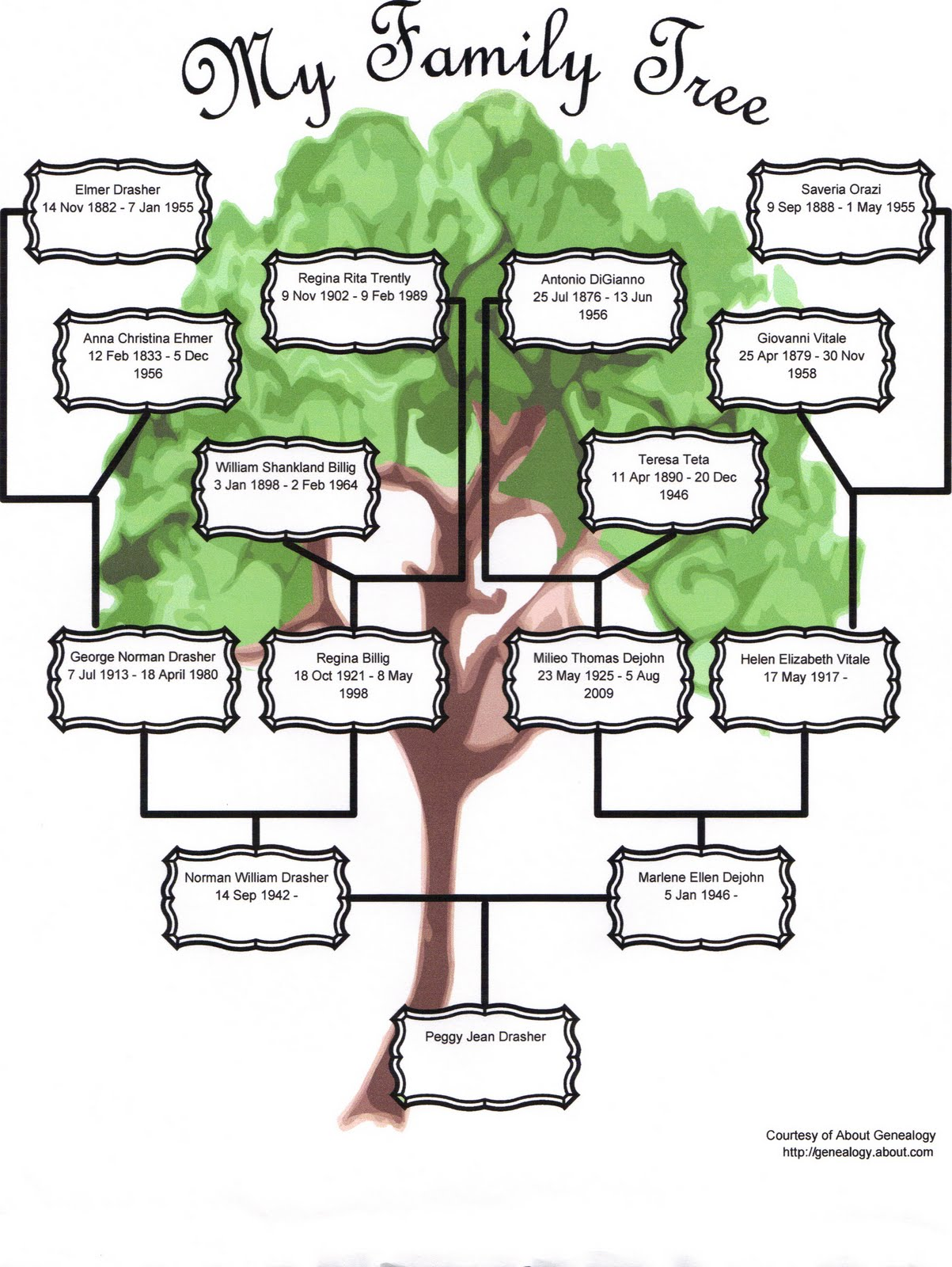 Family tree template family tree template three generation for Family tree templates with siblings